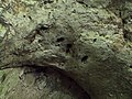 Devetashka cave 066.jpg