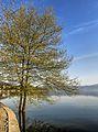 Dojran Lake 179.jpg