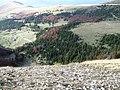 Dolina izmedju Turjaka i Bjelogrivca, levo u pozadini je Mučnica - panoramio.jpg