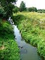 Dolní Cerekev, řeka Jihlava (01).jpg