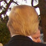 Donald Trump's hair from behind, 2007.jpg