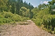 Donauversickerung01.jpg