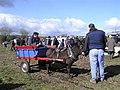 Donkey and cart, Garvaghy - geograph.org.uk - 1224980.jpg