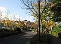Dorset County Hospital - Autumn sunshine - geograph.org.uk - 1021935.jpg