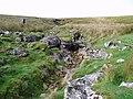 Dover Gill - geograph.org.uk - 254357.jpg
