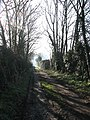 Driveway to Manor Farm - geograph.org.uk - 687152.jpg