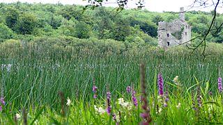 Ruan, County Clare Village in Munster, Ireland