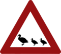 Ducks crossing the road sign.png
