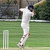 Dunmow CC v Brockley CC at Great Dunmow, Essex, England 40.jpg