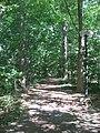 Dunn's Woods pathway southeastward.jpg