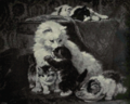 Dutch Painting in the 19th Century - Henriëtte Ronner-Knip - Among Ourselves.png