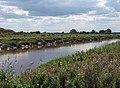 Dutch River Goole - geograph.org.uk - 933881.jpg