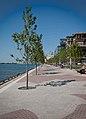 East Bayfront Promenade Toronto 2011.jpg