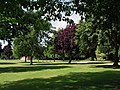 Edmunds Park - geograph.org.uk - 1931568.jpg