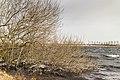 Een ijzige wind waait over de Put van Nederhorst 14.jpg