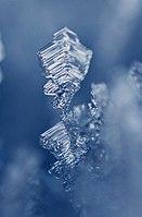 Eiskristall 02.jpg