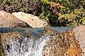 El Chalten-Sendero Salto del Chorrillo (38585121264).jpg