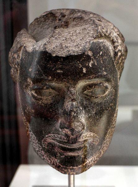 File:Epoca tolemaica, testa maschile barbata, 100-80 ac ca.jpg