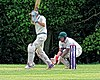 Epping Foresters CC v Abridge CC at Epping, Essex, England 041.jpg
