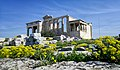 Erechtheion in Spring.jpg