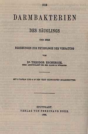 Theodor Escherich - Escherich's habilitation treatise
