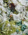 Euxenite-(Y), Microcline, Epidote, Chlorite-322867.jpg