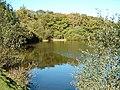 Eyeworth Pond, Fritham - geograph.org.uk - 332659.jpg