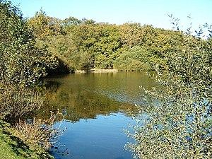 Eyeworth Pond - Eyeworth Pond