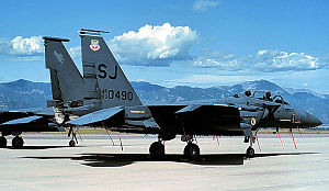 4th Fighter Wing - McDonnell Douglas F-15E-48-MC Strike Eagle, AF Serial No. 89-0490 of the 334th Fighter Squadron.
