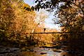 Fall-colored footbridge - panoramio.jpg