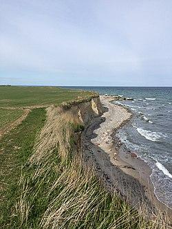 Falster - cliffs.jpg