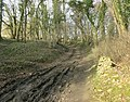 Farm track and bridleway near Castle Combe - geograph.org.uk - 1232657.jpg
