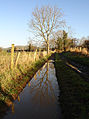 Farm track at Ballyward - geograph.org.uk - 345325.jpg
