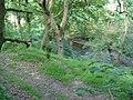 Farm track beside Lower Clydach River - geograph.org.uk - 846490.jpg
