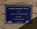 Fausse plaque de rue en mémoire de Zenith Campbell (Zena) - journée du souvenir trans - rue Violi (Lyon).jpg
