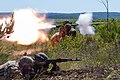 Fearless Guardian live-fire exercise Ukraine.jpg