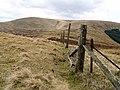 Fence, Mitchell Hill - geograph.org.uk - 762213.jpg