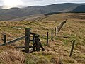 Fence junction, Starcleuch Edge - geograph.org.uk - 671005.jpg