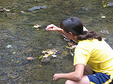 Field Trip- water sampling.jpg