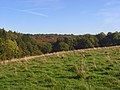 Field and woodland, Stokenchurch - geograph.org.uk - 1013338.jpg