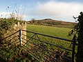 Field near Bickaton - geograph.org.uk - 1071821.jpg