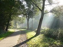 Fietspad naar campus Diepenbeek.JPG