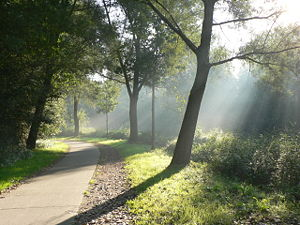 University of Hasselt - Cycling path towards campus Diepenbeek