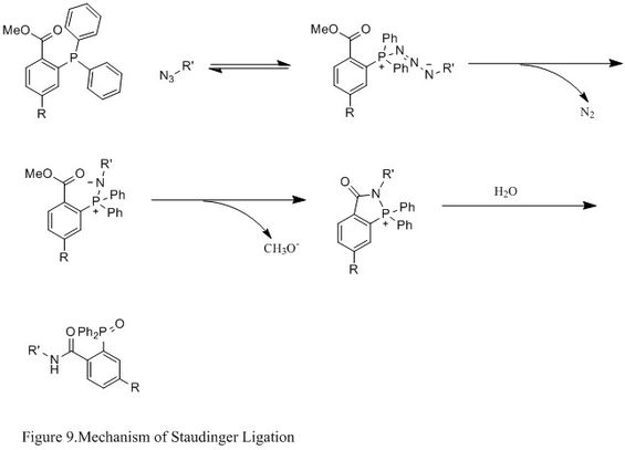 Figure 9. Mechanism of Staudinger Ligation.jpg