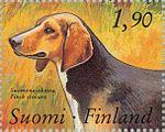 Finnish-Flushing-Dog-Canis-lupus-familiaris.jpg