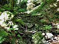 Finsteres-Loch2.jpg