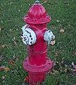 Fire hydrant 6.jpg