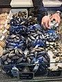 Fiskebryggen, Mathallen, Fishmarket, Bergen, Norway 2018-03-16. Mytilus edulis (blåskjell), Cardiidae (vongole, hjerteskjell), etc. displayed for sale at Fjellskål sea food store.jpg