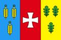 Flag of Dubenskiy Raion in Rivne Oblast.png