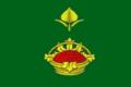 Flag of Yagodnovskoe (Volgograd oblast).png